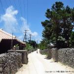 竹富島の集落の小道