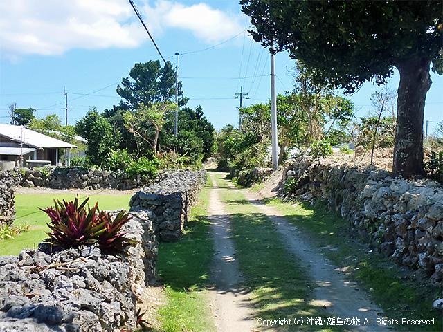 新城島(上地)「島の小道」