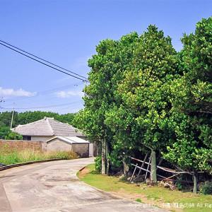 久高島の集落
