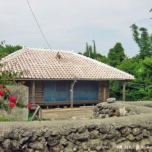 ぜ奈々子の家