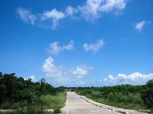 島の外周道路