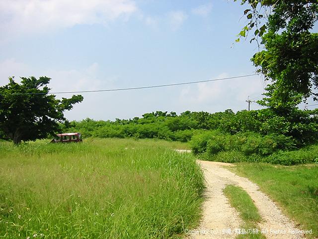 こんな感じの道で島を一周できる