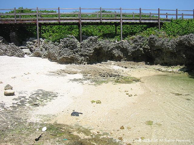 浜に下りてみたところ