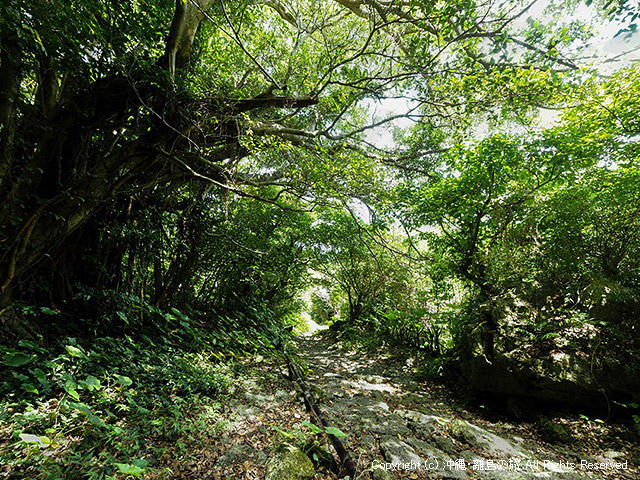 垣花樋川の石畳