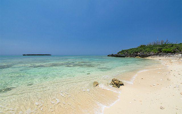 アダンの木陰が気持ちいいカモメ岩のビーチ