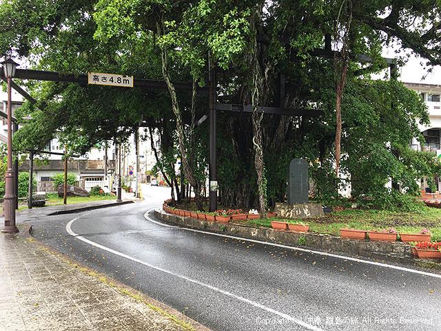 名護城入口バス停は「ひんぷんガジュマル」のそばにあるよ