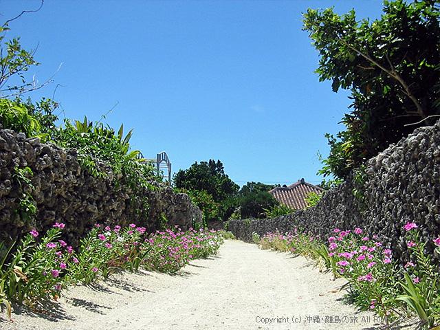 小道の散歩はとてもきもちいい