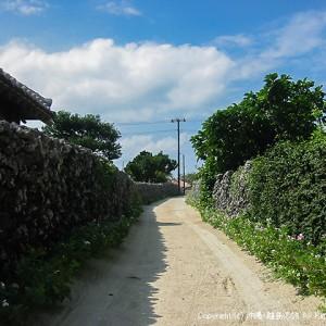 竹富島の小道