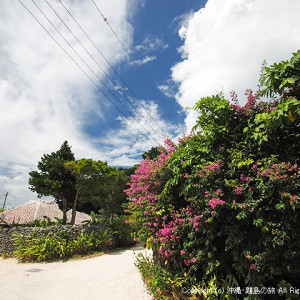 竹富島のバーチャル体験