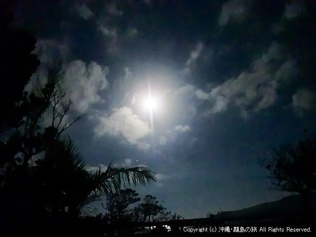 庭から眺める月