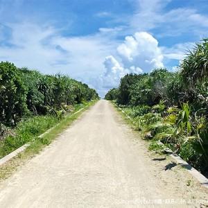 カベール岬へ続く道