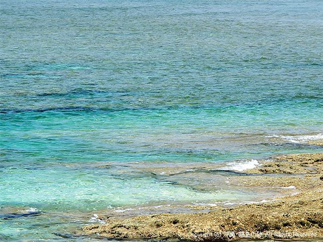 眺めてキレイな海は潜ってもキレイなはず?