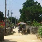 竹富島観光の名物、水牛車