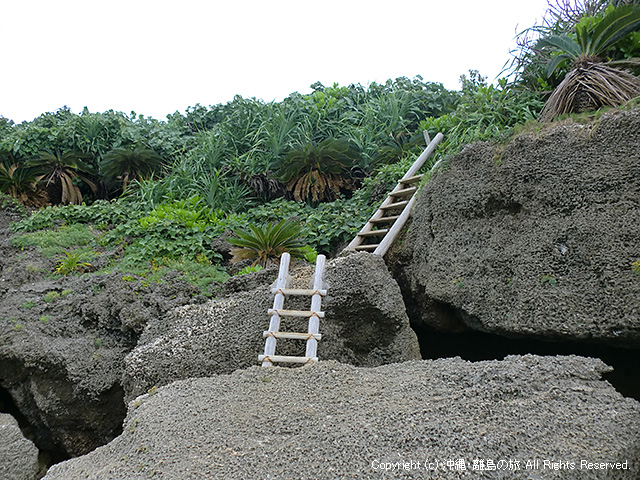 ビーチから階段を見上げるとこんな感じ