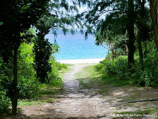 茂みの向こうにビーチが見える