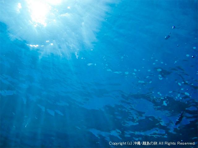 海のシモネタ