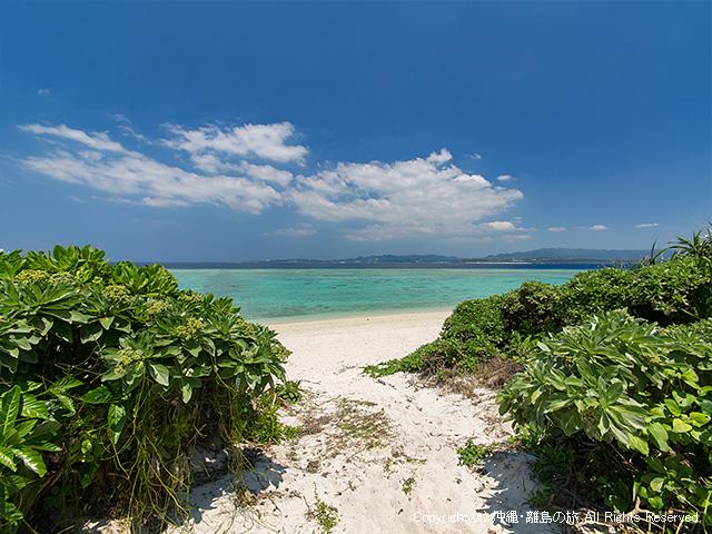 島の内部から見たビーチへ出る道